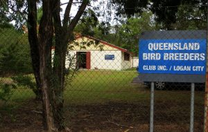 Loganlea Meeting Location - Qld Bird Breeders Club Meeting Hall
